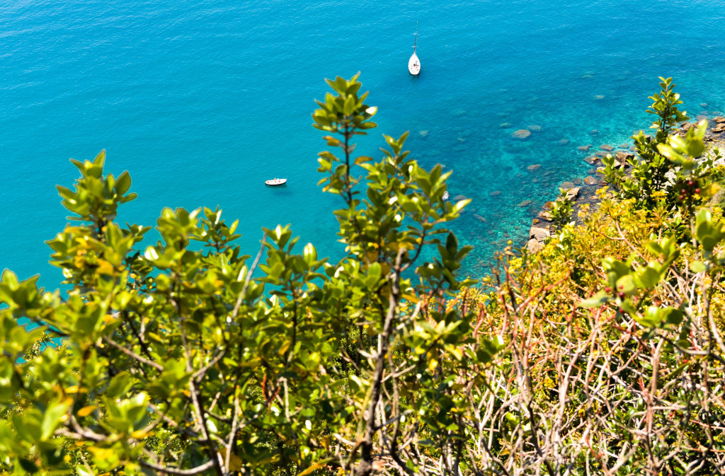 Cinque Terre Trek, A hiking day trip along the Italian Riviera, Walkabout florence tour, vernazza